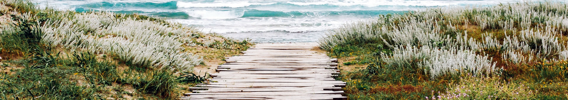 wooden path leading to the beach